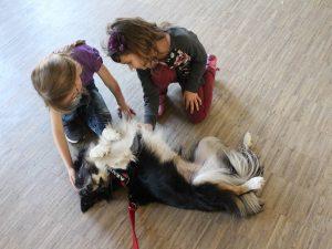 kinder lernen den richtigen umgang mit hunden